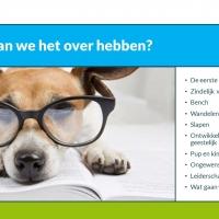 PowerPoint presentatie Hondenservice Braaf!